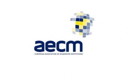 Statistikat e AECM – Semestri i parë 2019