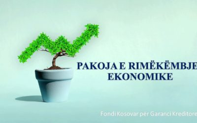 FKGK zbaton dritaret garantuese në kuadër të Pakos së Rimëkëmbjes Ekonomike